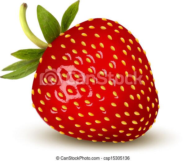 strawberry., vector. - csp15305136