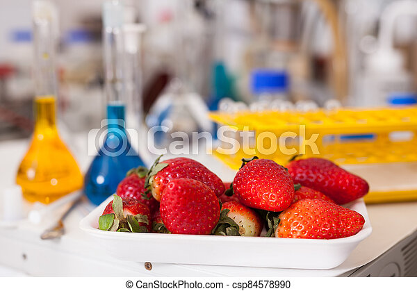 Strawberry with lab test tubes - csp84578990
