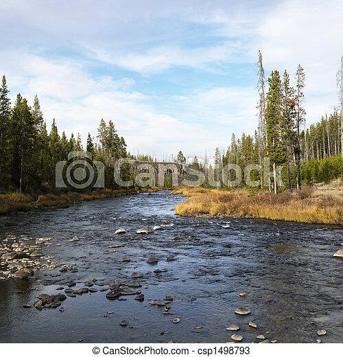 Stream in Yellowstone Park. - csp1498793