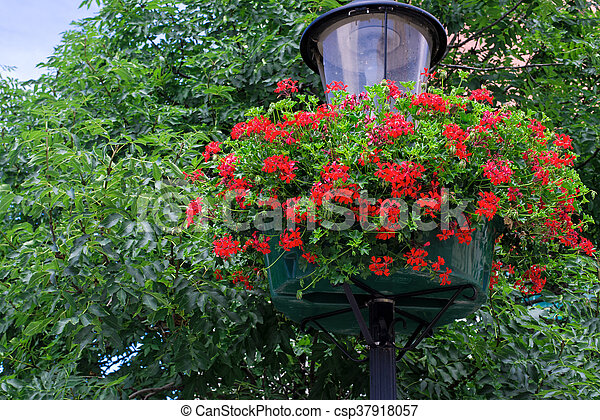 street lamp with hanging flower baskets - csp37918057