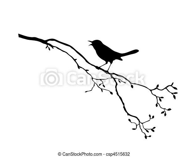 strom, vektor, silueta, ptáček, filiálka - csp4515632