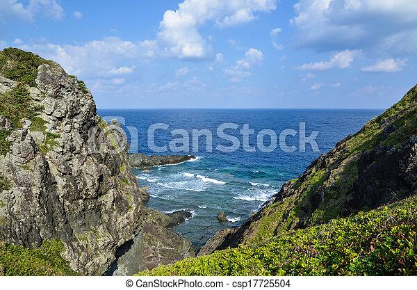 stromy, przybrzeżny - csp17725504