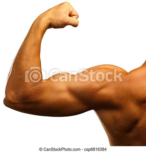 strong biceps - csp6816384