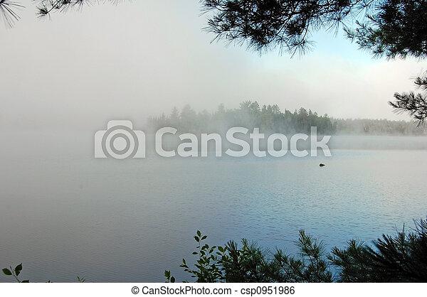Strong fog - csp0951986