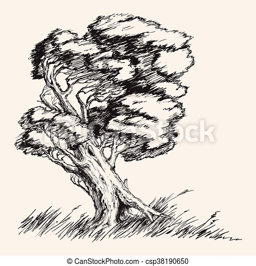Strong wind tree hand drawn vector illustration - csp38190650