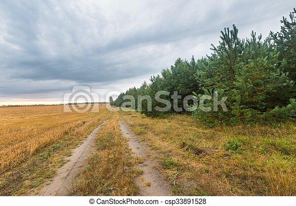 Stubble field landscape - csp33891528