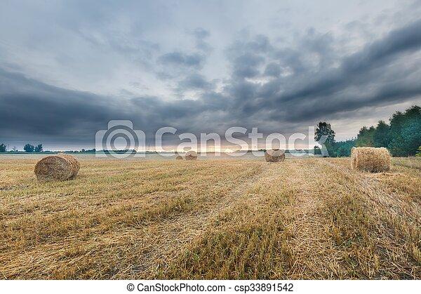 Stubble field landscape - csp33891542