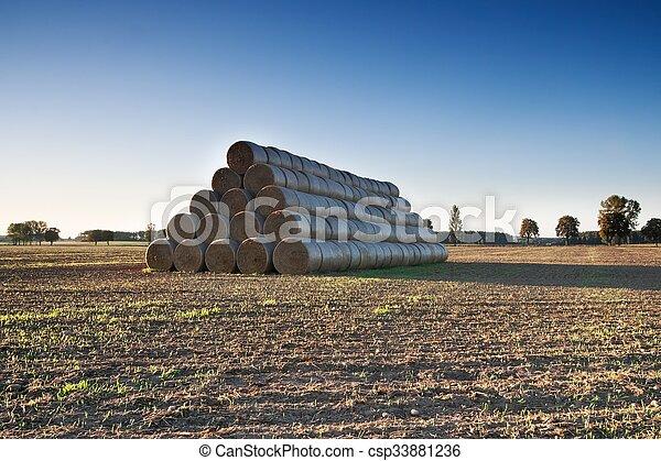 Stubble field landscape - csp33881236