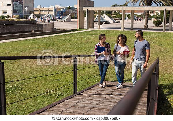 studenci, grupa, campus - csp30875907