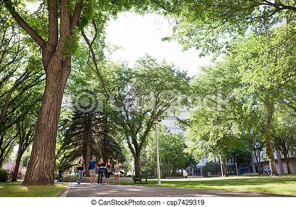 studenci, pieszy, grupa, uniwersytecki obręb szkoły - csp7429319