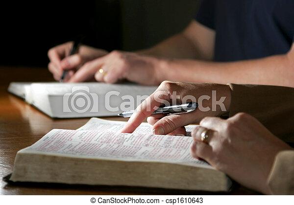 studovna, dvojice, bible - csp1610643