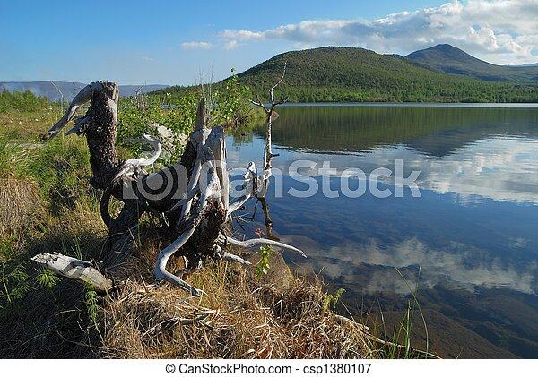 Stump on coast of lake - csp1380107
