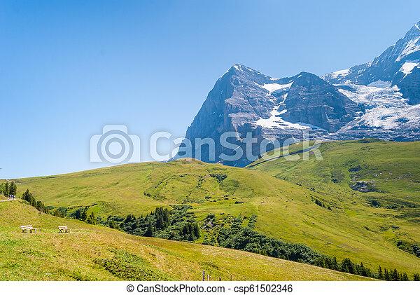 stunning Alpine panorama of Eiger peak. Grindelwald Bernese Alps Switzerland Europe - csp61502346