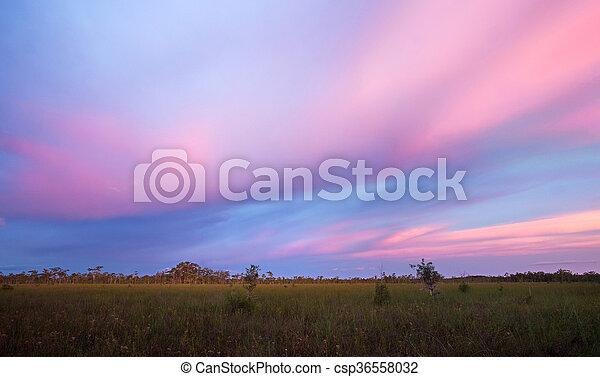 Stunning Sunset over Florida Sawgrass Prairie - csp36558032