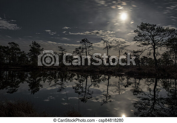 stunningly beautiful view of the night sky over a forest lake - csp84818280
