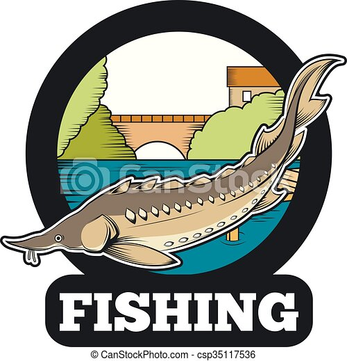 vector image of a sturgeon fishing banner rh canstockphoto com