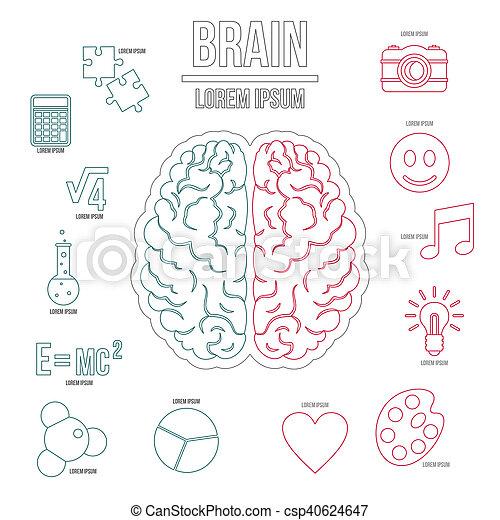 style, contour, ensemble, cerveau, humain, infographics - csp40624647