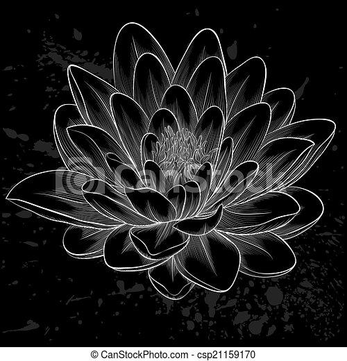 Style Fleur Lotus Isolé Peint Graphique Noir Blanc