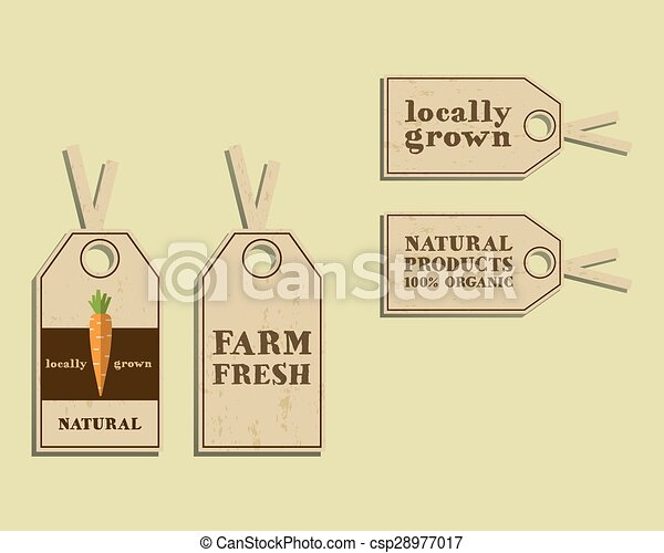 Stylish farm fresh sticker and label template or brochure design with carrot mock up design with
