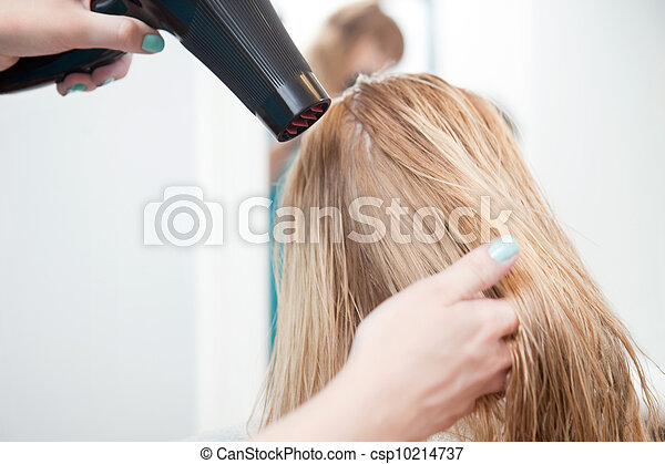Stylist Drying Womans Hair - csp10214737