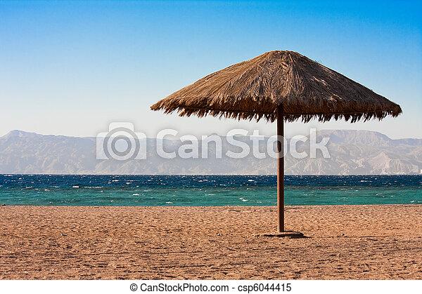Sole sunshade en una playa - csp6044415