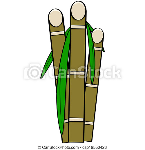 cartoon illustration showing three stalks of sugar cane with rh canstockphoto com images of sugarcane clipart sugar cane clipart black and white