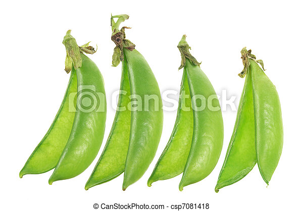 Sugar Snap Peas - csp7081418