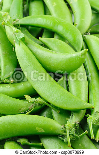 Sugar snap peas - csp3078999