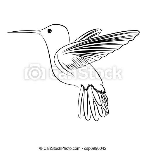 Ein summender Vogel - csp6996042