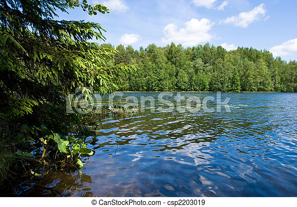 Summer at the forest lake - csp2203019