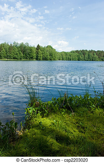 Summer at the forest lake - csp2203020