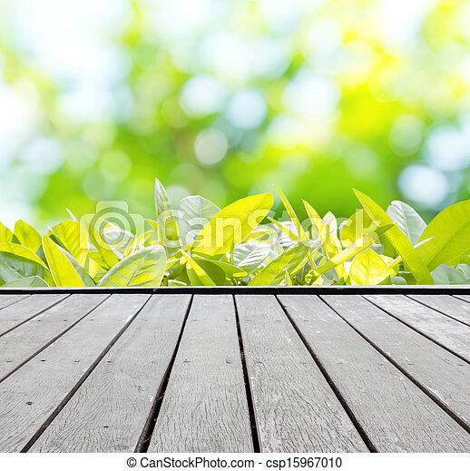 Summer Background - csp15967010