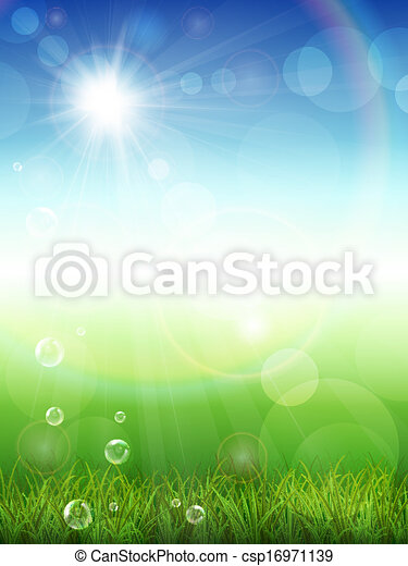 Summer background with green grass - csp16971139