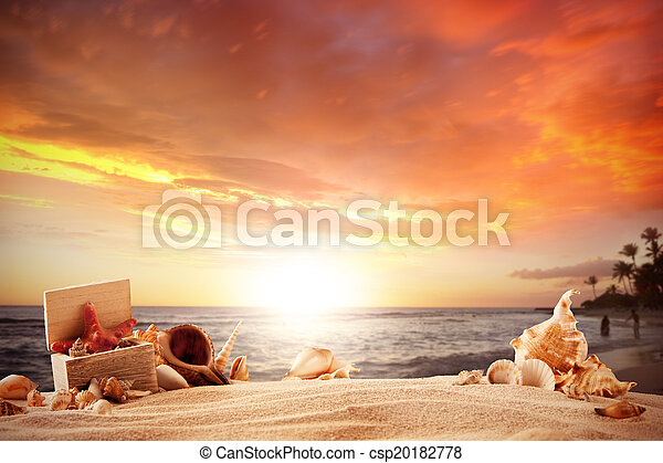 Summer beach with strafish and shells - csp20182778