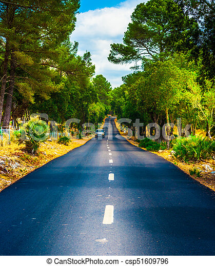 Summer Country Road With Trees. - csp51609796