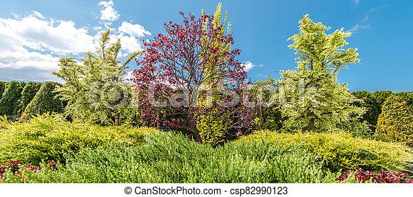 Summer Day Backyard Garden Trees and Plants - csp82990123