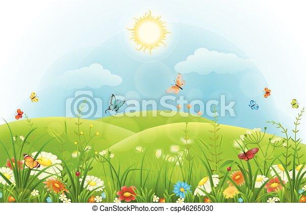 Summer floral background - csp46265030