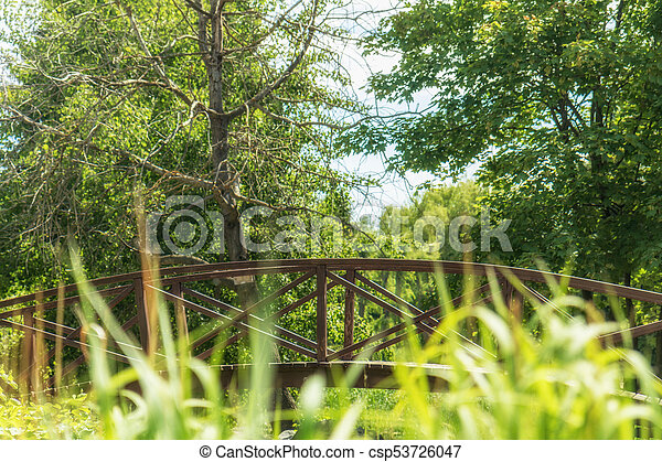 Summer footpath in the city park with a bridge on a sunny day - csp53726047