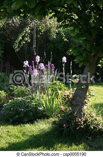 Summer Garden - csp0005190