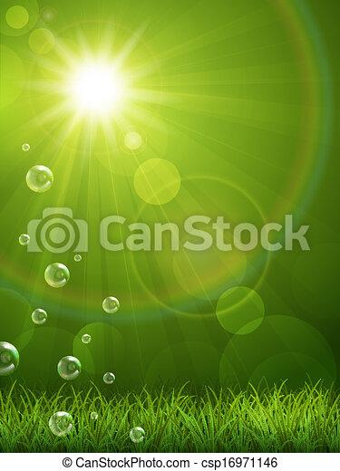 Summer green background - csp16971146