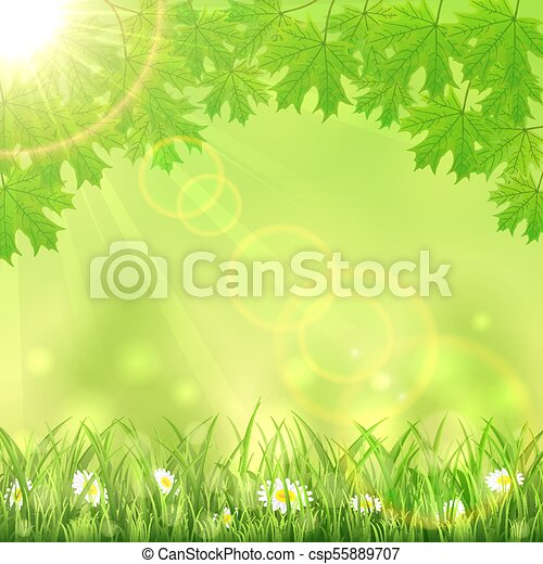 Summer green nature background
