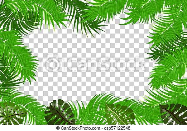 summer jungle palm leaf frame web summer jungle frame banner green