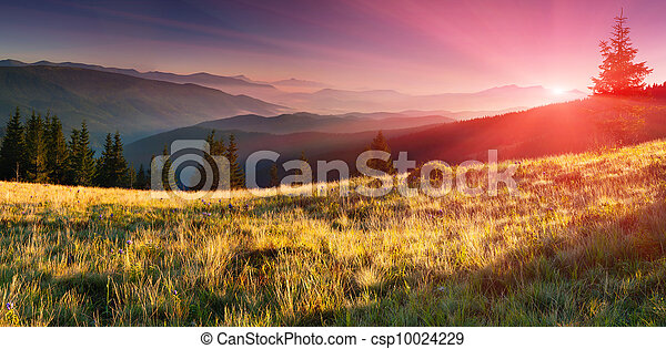 Summer landscape in the mountains. Sunrise - csp10024229
