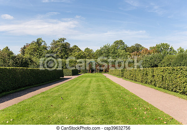 summer landscape in the park - csp39632756