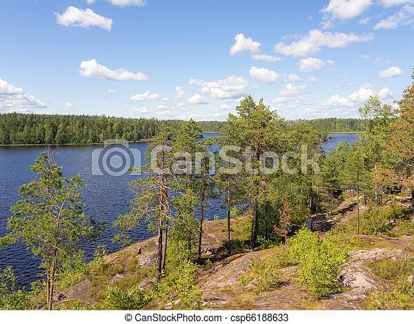 summer landscape on a forest lake - csp66188633
