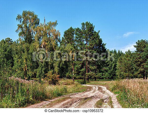 Summer Landscape - csp10953372
