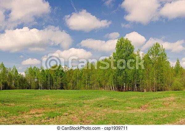 summer landscape - csp1939711
