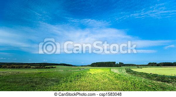 summer landscape - csp1583048