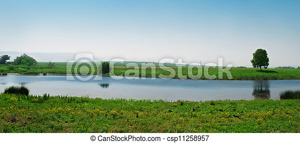 summer landscape - csp11258957