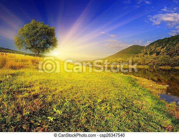 summer landscape - csp26347540